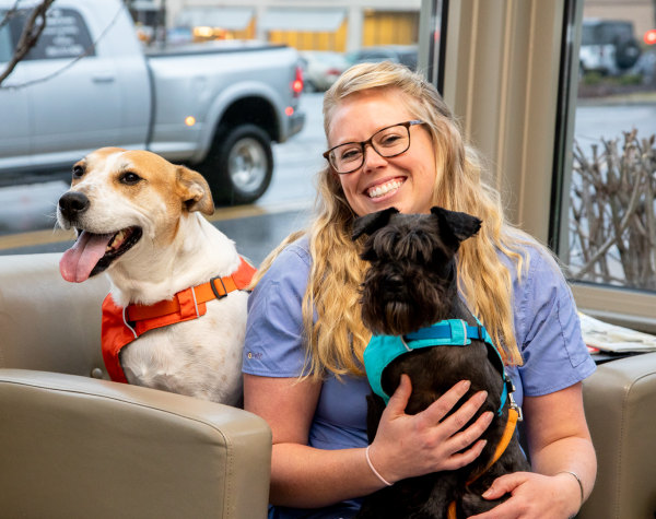New Patients Information, Asheville Vet